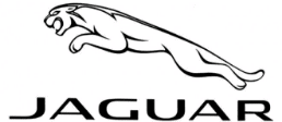 Lost Jaguar Car Keys